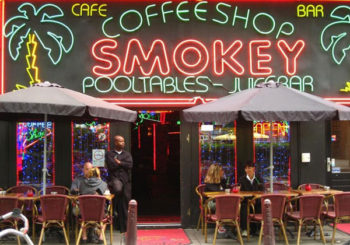Marijuana 4 Dummies: The Las Vegas Weed Problem, US Needs Marijuana Coffee Shops! (7-24-17)