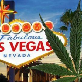 Marijuana 4 Dummies: Mario Hemsley's Heading To Sin City To Check Out Recreational Marijuana (7-10-17)
